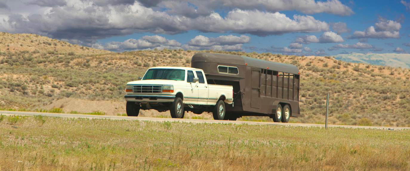 What are the Best Horse Trailer Tires?